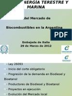 Evolucion Del Mercado de Biocombustibles en La Argentina