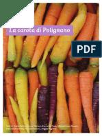 La carota di Polignano