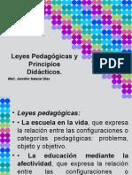 Leyes Pedagógicas y principios didácticos.ppt