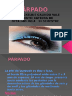 4.- PARPADO.pptx