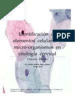 IDENTIFICACIÓN  DE  ELEMENTOS  CELULARES  Y MICRO-ORGANISMOS  EN  CITOLOGÍA  CERVICAL