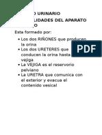 APARATO_URINARIO