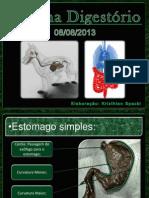 Slides Sobre Sistema Digestório, Medicina Veterinária. Elaborado Por Kristhian Felipe Spacki