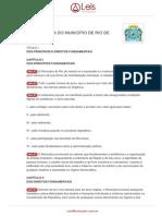 Lei-organica-1-1990-Rio-de-janeiro-RJ.pdf