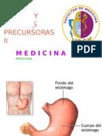Lesiones Precursoras II (16 Mayo 2015)