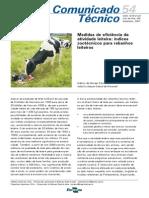 COT54_Medidas_de_eficiencia_da_ativ_leiteira_indices_zootecnicos.pdf
