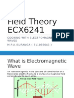 Electromagnetic Waves for Cooking