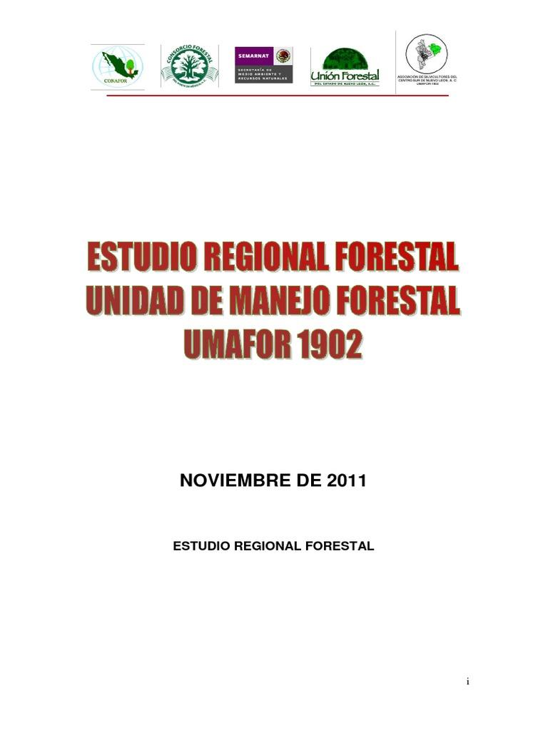 Estudio Umafor Nuevo Leon