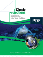Climate Change Projections and Marine Turtles in the Wider Caribbean - Fish, Lombana & Drews 2009