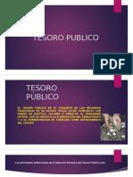 Tesoro Público Finanzas Publicas