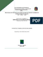 Conceptos y Formulacion de Indicadores IMP