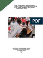 Linea Jurisprudencial t025