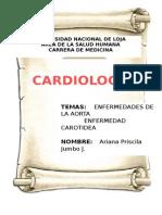 E. Aorta, Carotidea y Periferica