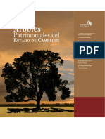 Arboles Patrimoniales  de Campeche