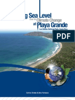 Rising Sea Level Due to Climate Change in Playa Grande, Las Baulas National Park, Costa Rica - Drews & Fonseca 2009