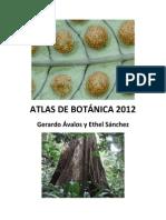 Atlas de Botánica 2012