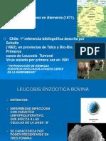 [bovino] Leucosis Enzootica