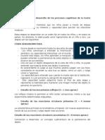 Características Del Desarrollo de Los Procesos Cognitivos de La Teoría de Piaget