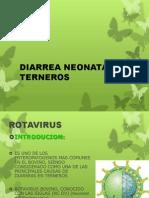 [Bovino] Rotavirus y Coronavirus