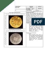 Deskripsi Petrografi