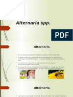 Alternaria Spp