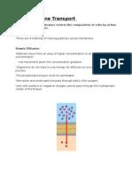 1 4 membrane transport