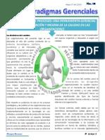 REINGENIERIA Paradigma-10