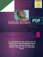 celula enferma (1)