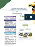 GUIA ECOSISTEMAS COLOMBIANOS-REVISADA.docx