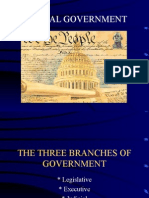 Social Studies - The Three Branches of Government - Responsibilities and Authorities