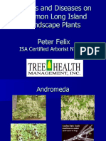 Insects and Diseases on Common Long Island Landscape