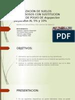 ESTABILIZACION-SE-SUELOS-POR-SUSTITUCION.pptx