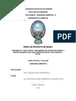 Perfil Oxidación química y encapsulamiento de hidrocarburos