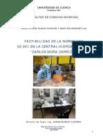 TESIS. pdf