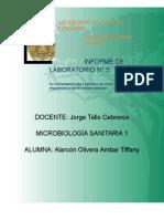 INFORME LABORATORIO 5 MICROBIOLOGIA SANITARIA I