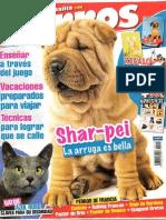 Perros y Compañia Nº193