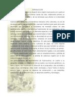 Resumen Del Trabajo-biomas de Hvca