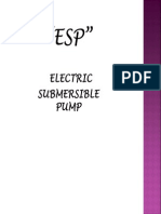 ESP Introduction