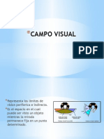Campo Visual - Chuquiruna