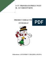 Proiect inspecție definitivat