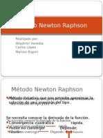Exposicion 5 Econometria II Método Newton Raphson