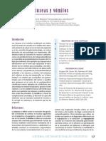 Fisiopatologia de Nauseas y Vomitos