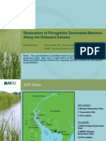 Bickle Phragmites Management Along Delaware Estuary 060415