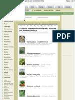 Hierbas Aromatic As, Semilleros y Cultivos de Info Jar Din