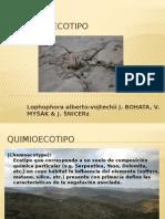 Quimioecotipo o extremofilas