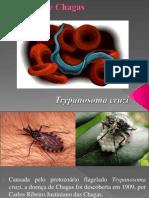 Doenca de Chagas