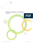 Designer Developer - Exercises QlikView