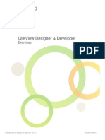 Designer Developer - Exercises QlikView