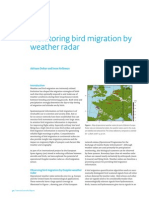 Bird Detection w Radar