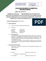 DECLARACION IMPACTO AMBIENTAL.doc